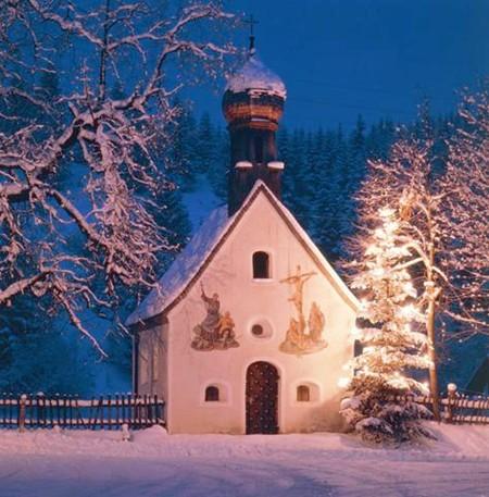 christmas-tree-in-germanys-karwendel-mts