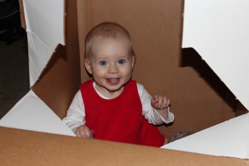 Amelie in box
