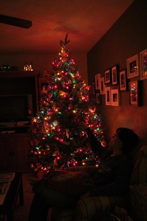 Dan's Christmas Tree