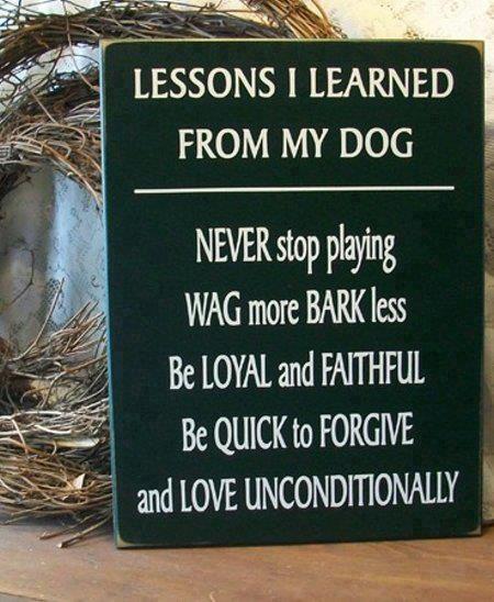 Dog Heir's shared by Lu D.