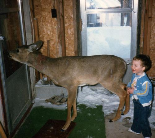Deer pet with PHil Quinn
