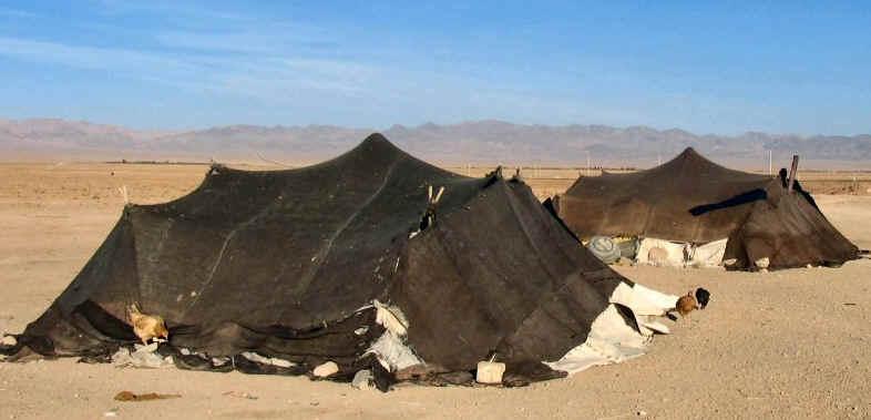 The Nomads - The Holy Land Spirit