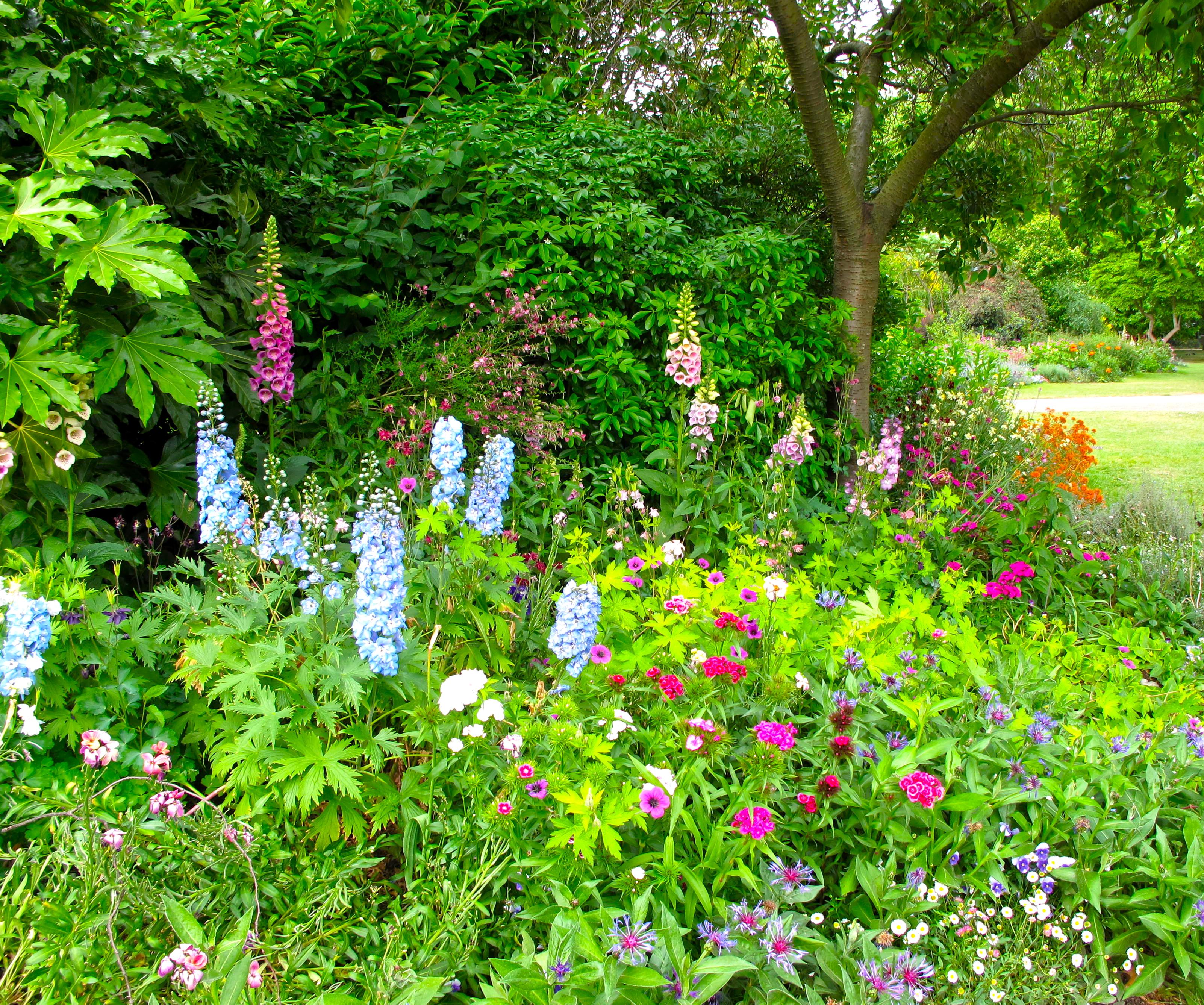 Garden flowers words of wisdom galatians 5 22 roses summer