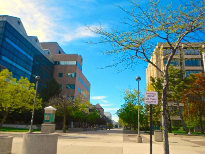 Campus WSU