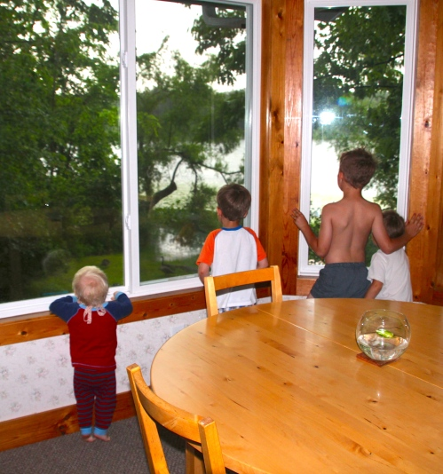Children looking out window