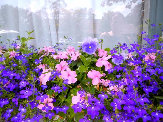 Planter of Flowers