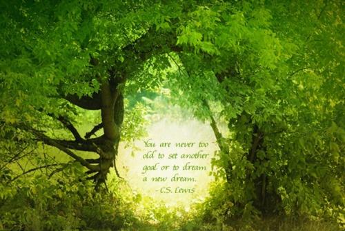 Door to the fairy land