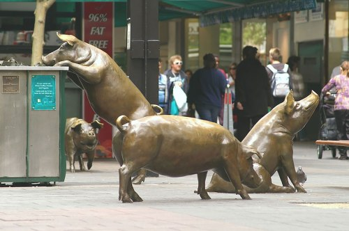 Pigs at the mall