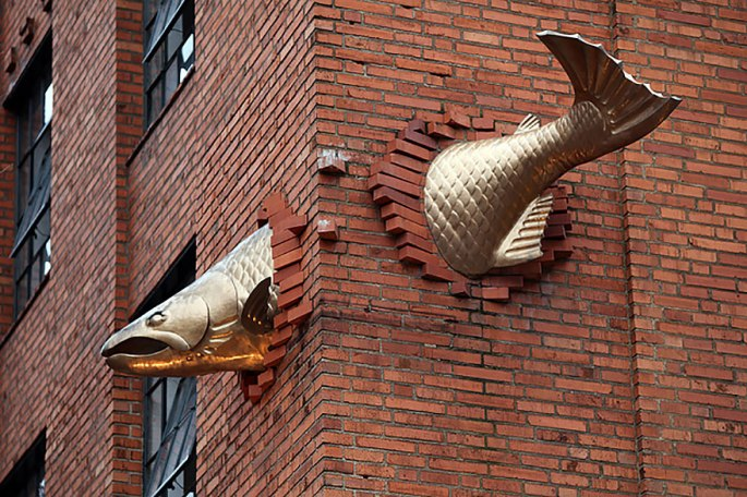 Salmon Through WAll