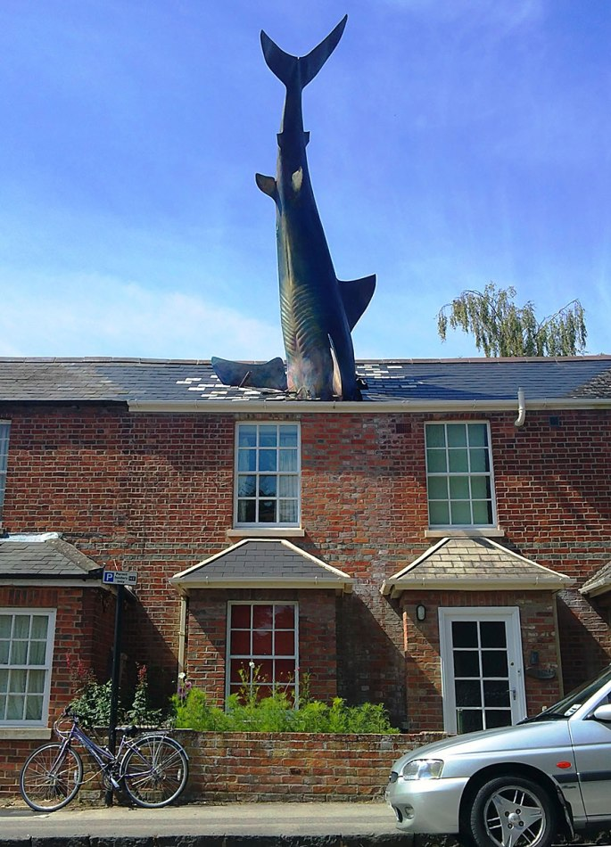 Shark crashing through roof