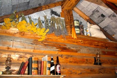 Authentic Log Cabin
