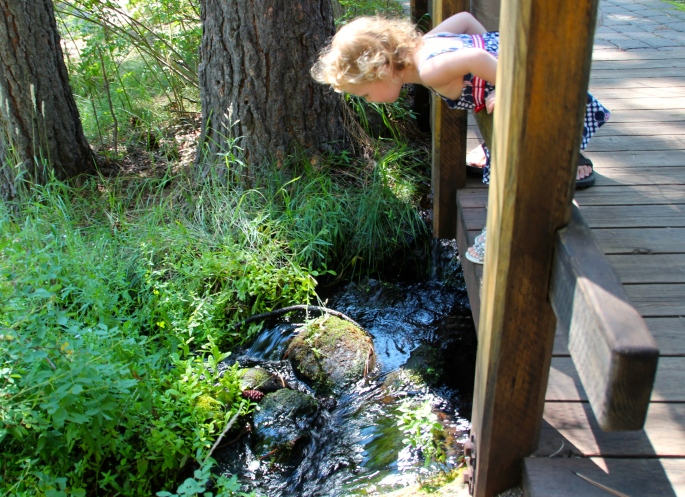 Child peering into stream