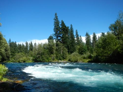 McKenzie River White Water