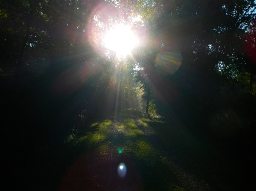 Sunrise Walk on Lane