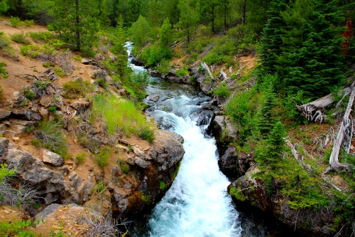 Upstream of Tumalo Falls