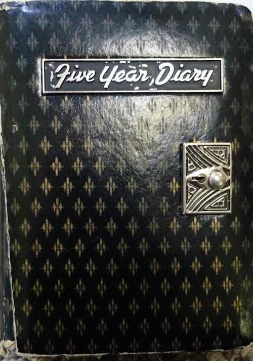 Aaron's Diary