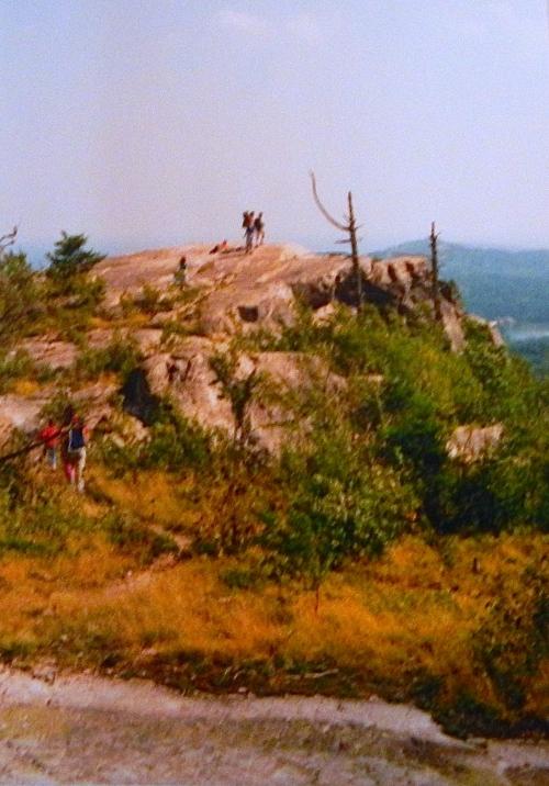 Climbing Hogback Mt.