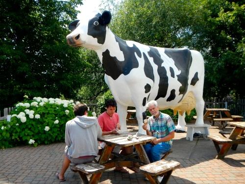 Jilbert Dairy Cow
