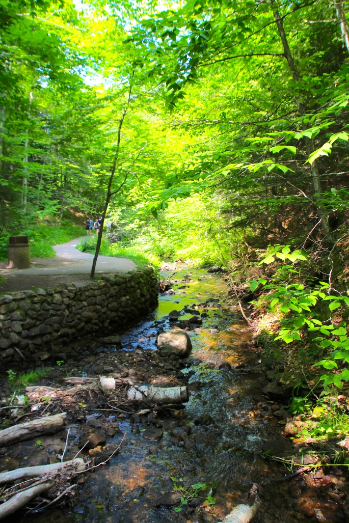 Munising Falls Trail