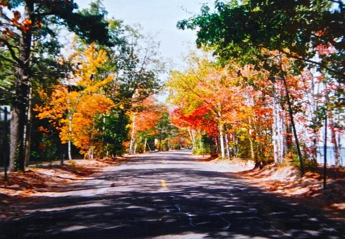 Presque Isle Road to