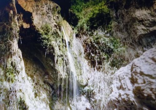 Springs of Engedi NRC