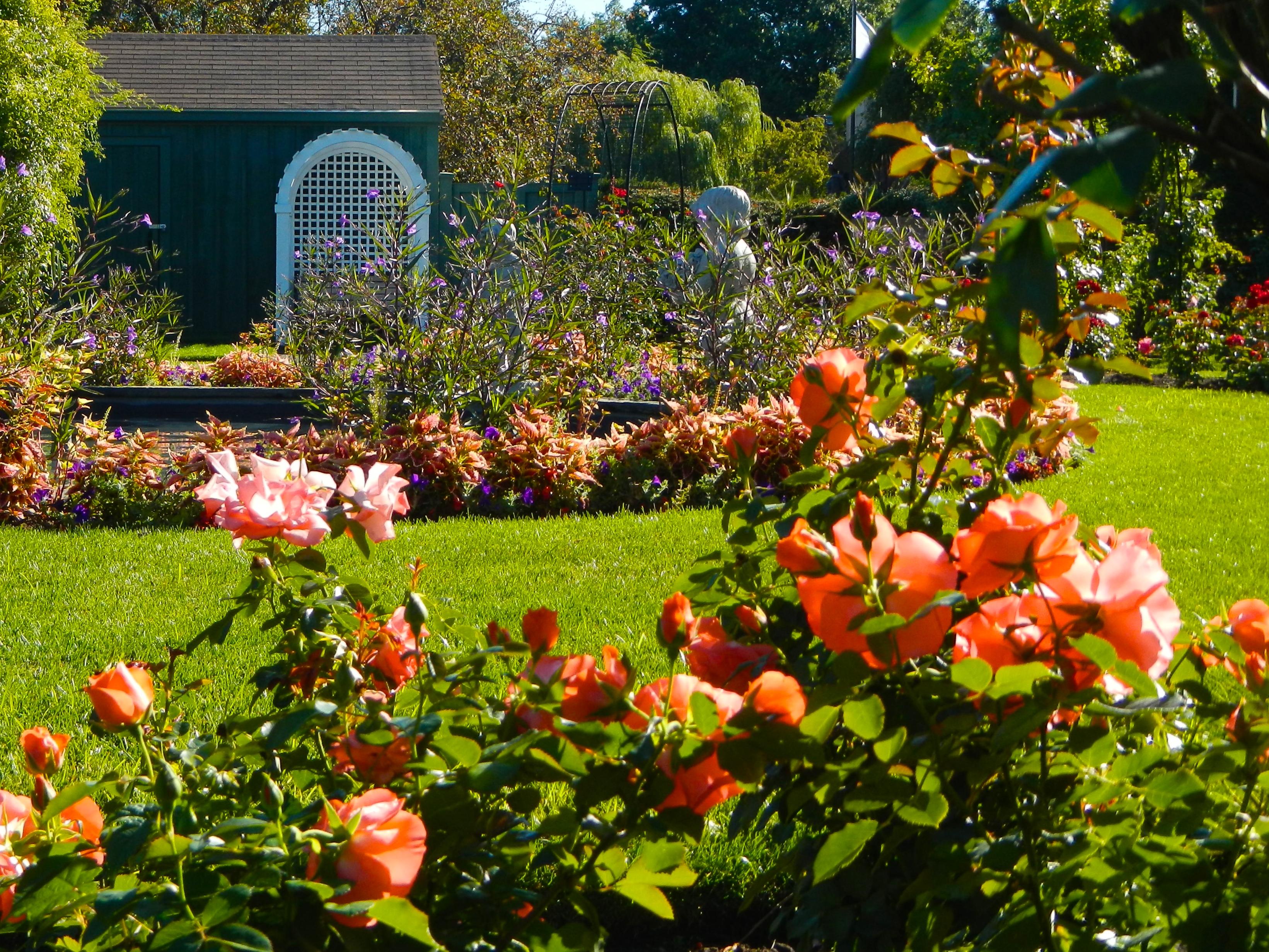 James P. Kelleher Rose Garden