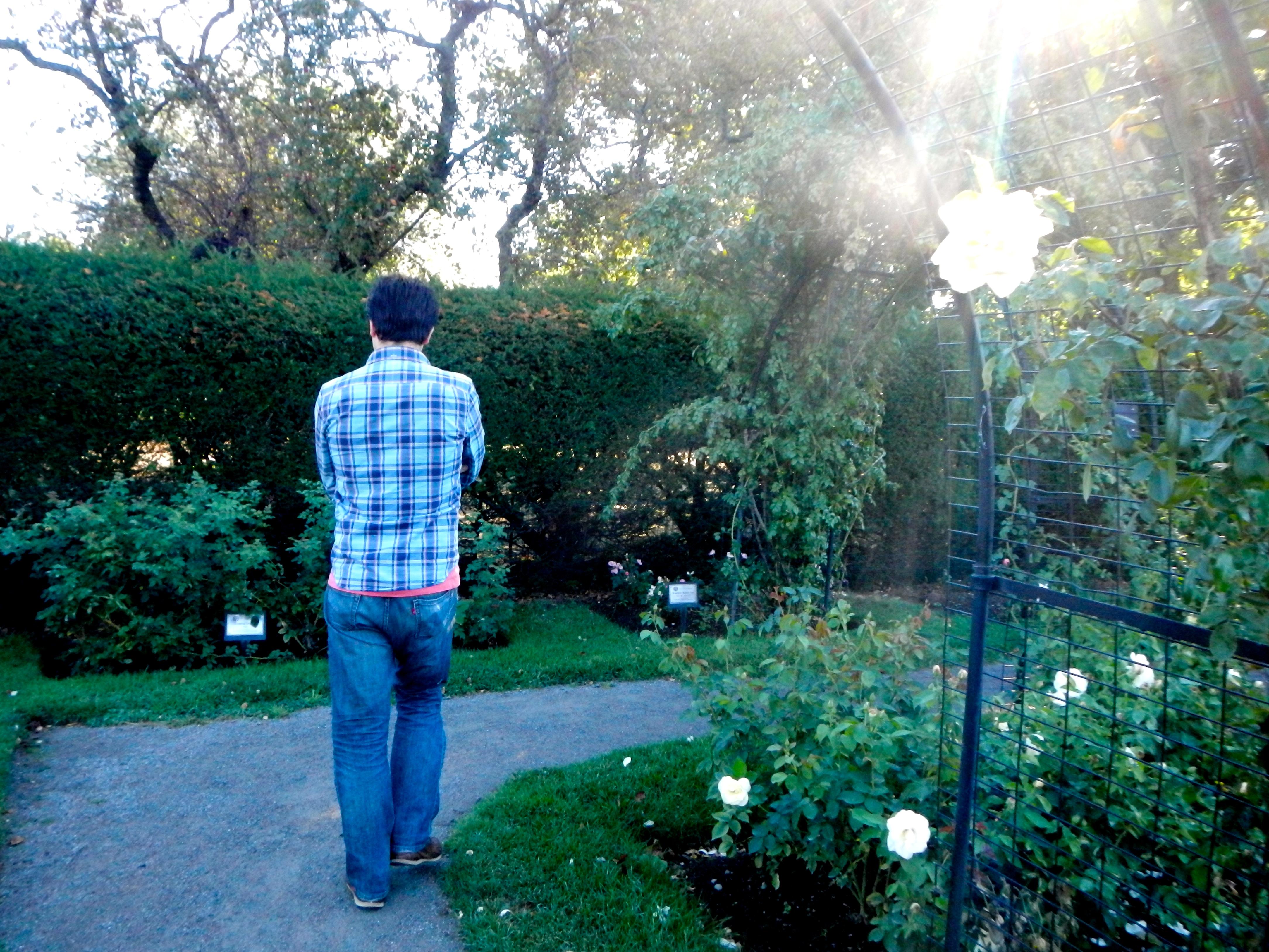 Joel in James P. Kelleher Rose Garden