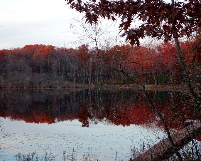 November Lake copy
