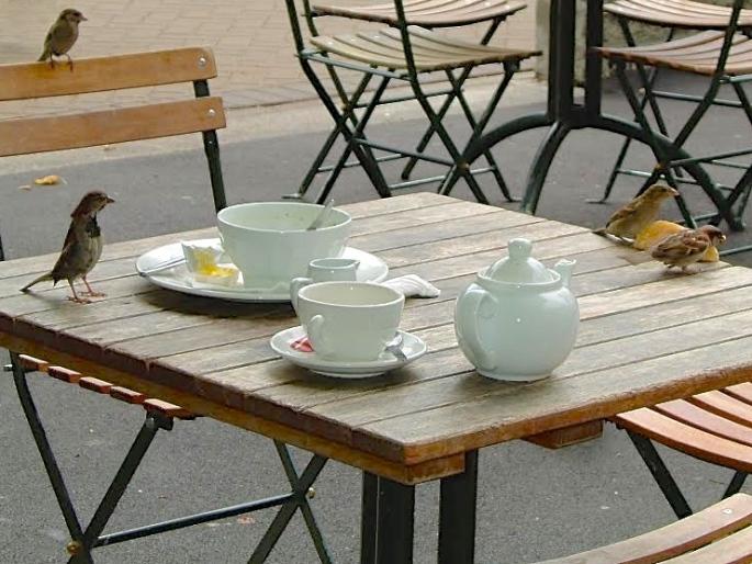 Sparrow Tea Party