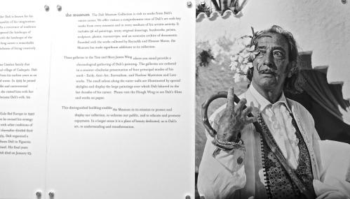 Portrait of Dalí