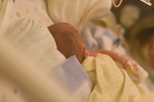 Preemie sleeping in isolette