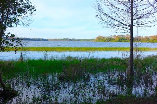 Bay Lake at Dawn
