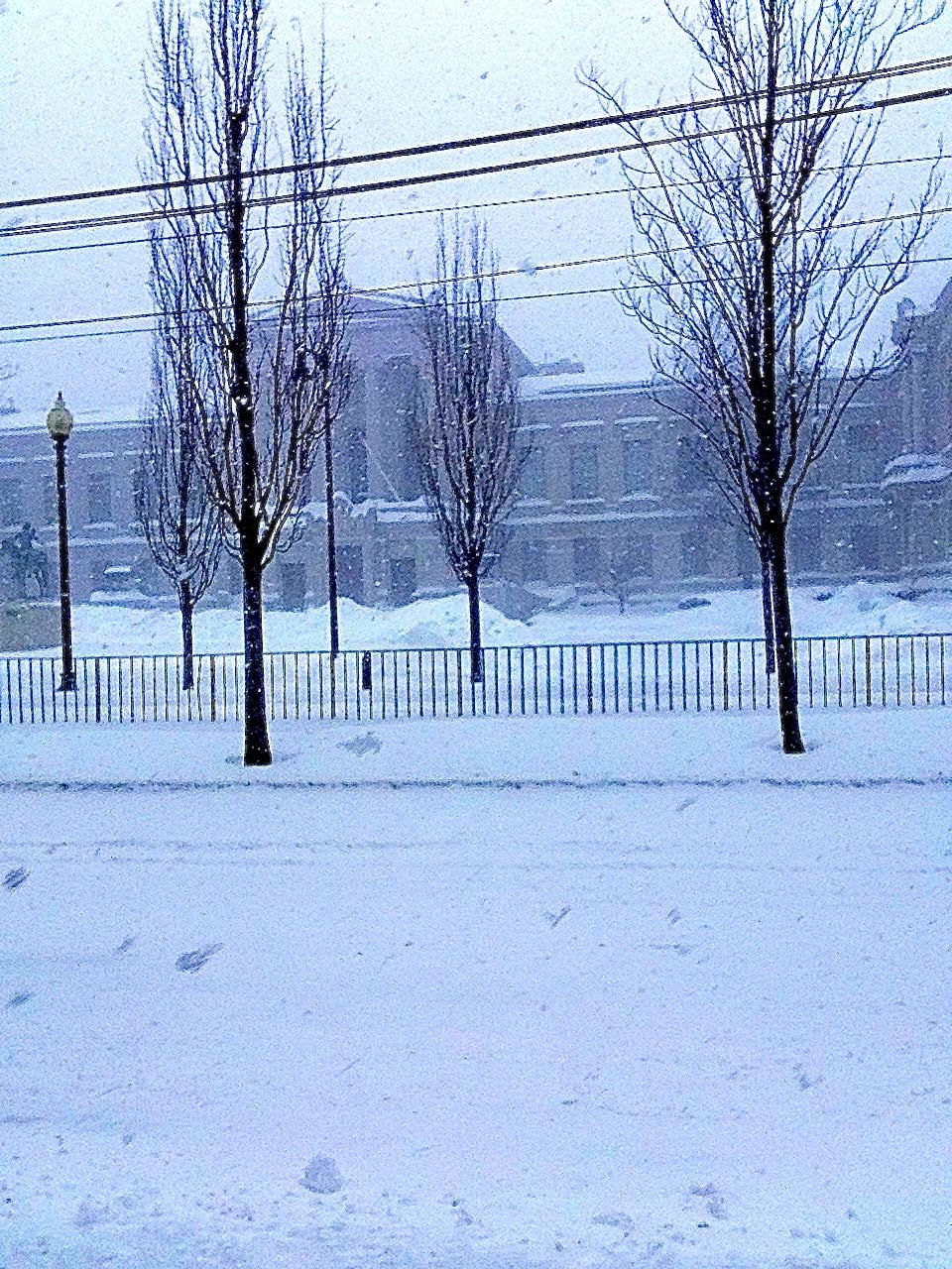Boston MFA in snow