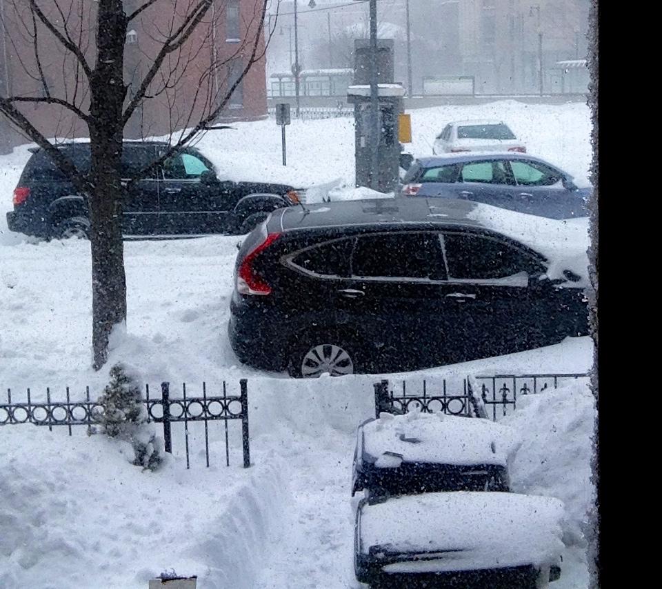 Boston Snows