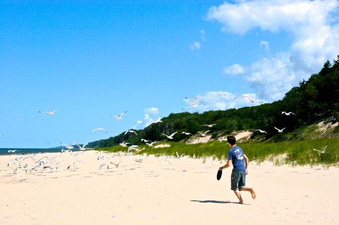Boy chasing sea gulls