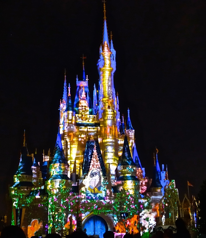 Cindarella's Castle at Night