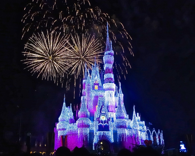 Cindarella's castle frosted in lights