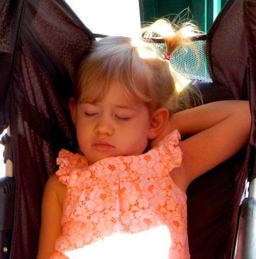 Iris Napping