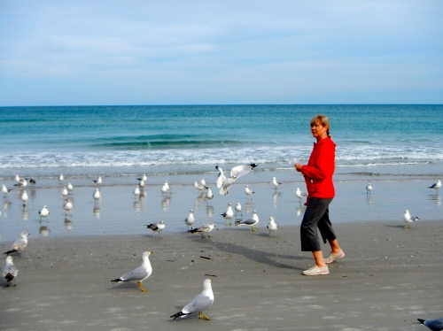 Lady feeding gulls