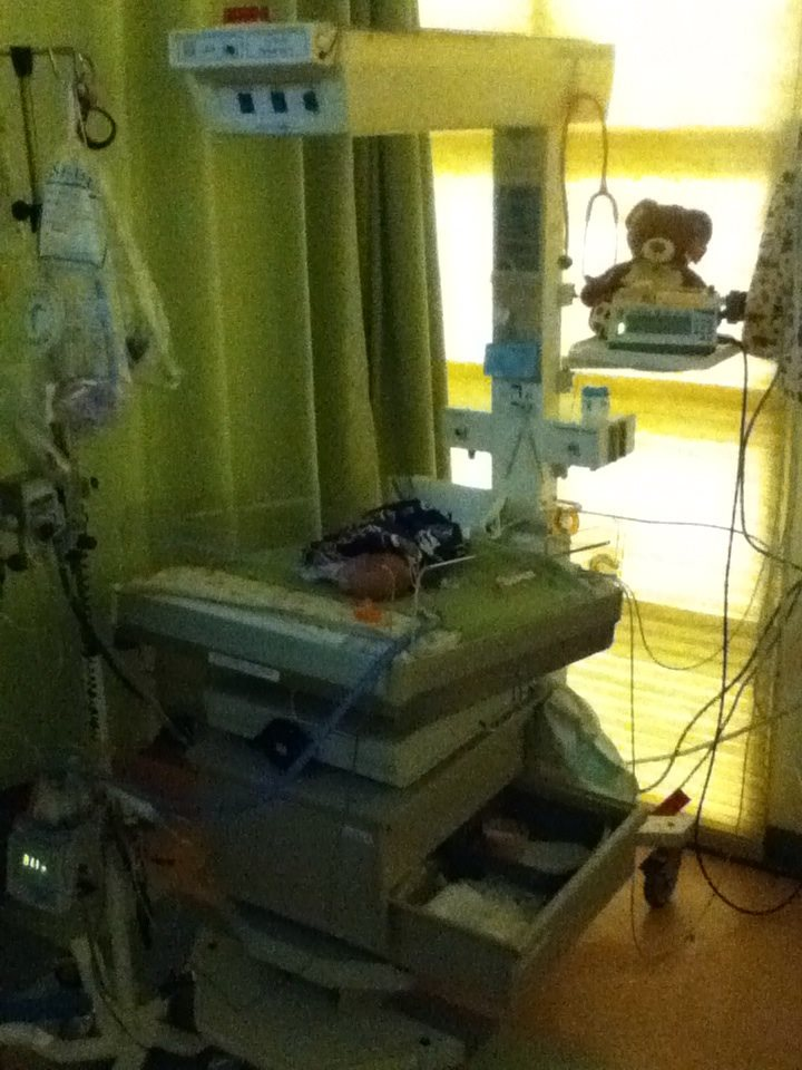 New home for Preemie