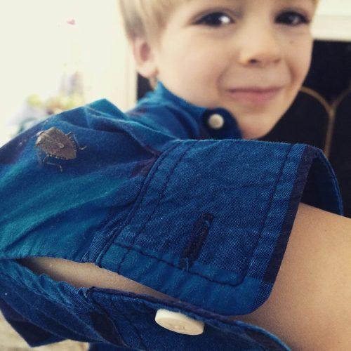 Boy with a stink bug