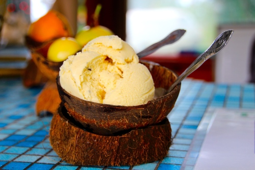 coconut macadamia nut lilikoi ice cream