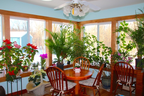 Garden Room 2015 Winter copy