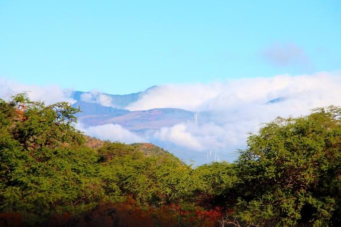 Puu Makua in distance