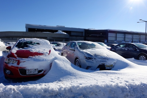 Snowy Rental Cars