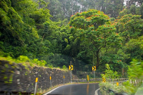 Steep, wet Hana Highway