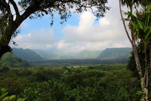 View of Ko'olau Gap from Wailua Valley State Wayside