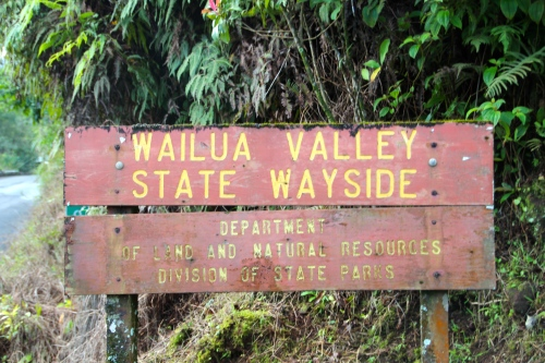 Wailua Valley State Wayside. Just before mm19