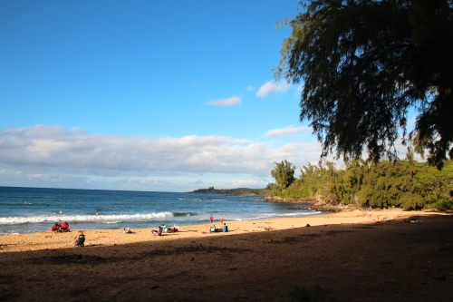 D.T. Fleming Park. Maui 2