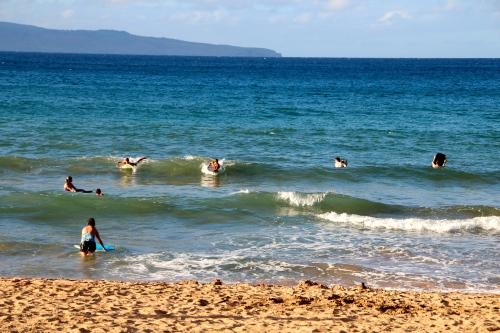 D.T. Fleming Park. Maui 3